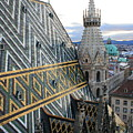 St Stephens Cathedral Vienna by Angela Rath