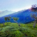 Nature Landscape Oil Painting On Canvas by World Map
