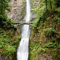 1416 Multnomah Falls by Steve Sturgill