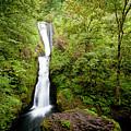 1418 Bridal Veil Falls by Steve Sturgill