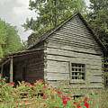 145925 Old Cabin Gsmnp by Ed Cooper Photography