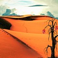 Desert by FL collection