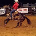 Steer Roping by Glenn Matthews