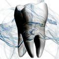 Anatomy Art by Joseph Ventura