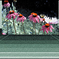Digital Artistry by Stephen Proper Gredler