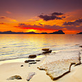 Sunset by MotHaiBaPhoto Prints