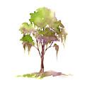 #16 Tree by Amy Kirkpatrick