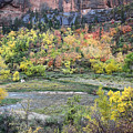 Zion National Park In Autumn by Pierre Leclerc Photography