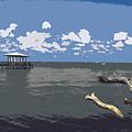 Indian River Lagoon by Allan  Hughes