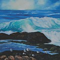 17 Mile Drive by Lorraine Wilcox