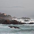 17 Mile Drive - Monterey by Marta Robin Gaughen