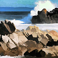 17 Mile Drive Pacific Ocean  by Chuck Kuhn
