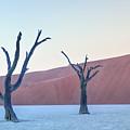 Sossusvlei - Namibia by Joana Kruse