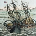 1815 Collosal Polypus Octopus And Ship by Paul D Stewart