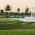 18th At Doral by Ed Gleichman
