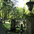 18th Century Cemetery In Virginia by Don Struke