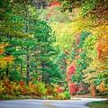 Autumn Season On Blue Ridge Parkway by Alex Grichenko