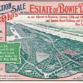 1915 Bronx Lots Sale Flyer by Rospotte Photography