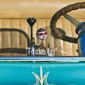 1925 T-bucket Rules by Jill Reger
