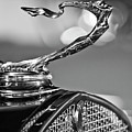 1930 Cadillac Roadster Hood Ornament 2 by Jill Reger