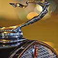 1930 Cadillac Roadster Hood Ornament by Jill Reger