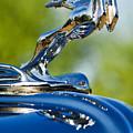 1931 Chrysler Cn Roadster Hood Ornament 2 by Jill Reger