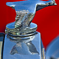 1931 Ford Model A Quail Hood Ornament by Jill Reger