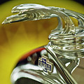 1932 Chevrolet Hood Ornament by Jill Reger