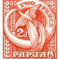 1932 Papua New Guinea Bird Of Paradise Postage Stamp by Retro Graphics
