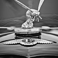 1934 Bentley 3.5-litre Drophead Coupe Hood Ornament -1669bw by Jill Reger