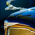 1934 Buick Series 96-c Convertible Coupe Hood Ornament - Emblem by Jill Reger