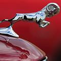 1936 Dodge Ram by Jill Reger