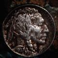1937 Buffalo Nickel by Robert Storost