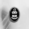 1937 Cord 812 Sc Phaeton Emblem -1203bw4 by Jill Reger