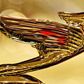 1938 Cadillac V-16 Sedan Hood Ornament 2 by Jill Reger