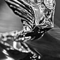 1938 Cadillac V16 Hood Ornament by Jill Reger