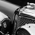 1938 Jaguar Ss100 3.5-liter Roadster Grille by Jill Reger
