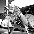 1940 Stearman Biplane by David Patterson