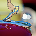 1947 Packard Coupe Hood Ornament by Jill Reger