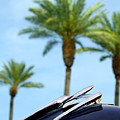 1950 Oldsmobile Rocket 88 Convertible Hood Ornament And Palms by Jill Reger