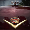 1952 Cadillac by Dennis Hedberg
