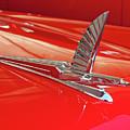 1954 Ford Cresline Sunliner Hood Ornament 2 by Jill Reger