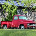 1955 Ford F100 Truck by Lori Deiter