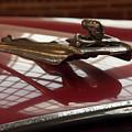 1955 Nash Ambassador Custom Hood Ornament by Chris Flees