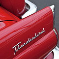 1956 Ford Thunderbird Taillight Emblem 2 by Jill Reger