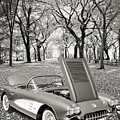 1958 Corvette By Chevrolet In The Park In A Sepia Photograph 349 by M K Miller