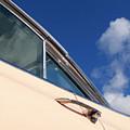 1959 Cadillac Coupe De Ville 09 by Richard Nixon
