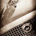 1959 Nash Metropolitan 1500 Convertible Hood Ornament - Grille Emblem -0180s by Jill Reger