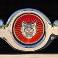1963 Jaguar Xke Roadster Emblem by Jill Reger