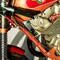 1964 Ducati 250cc F3 Corsa Motorcycle -2727c by Jill Reger